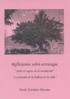 Reflexiones sobre estrategia Prado Esteban